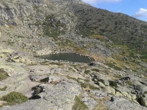 Laguna P
